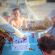 Gruppencoaching am Meer