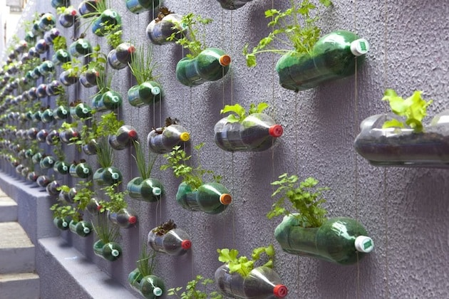 upcycling plastic soda bottles as an urban garden - Kreative Ideen