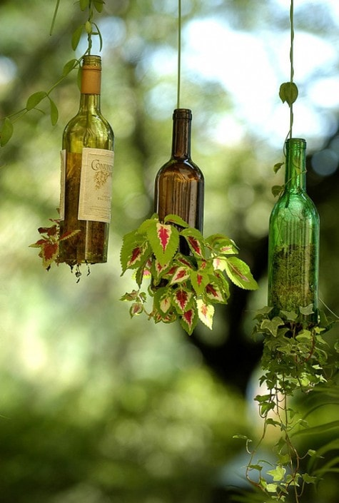 Urban gardening - upcycling wine bottles