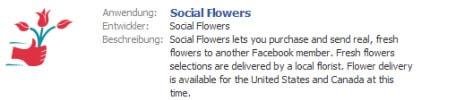 Vertriebsmodelle in Facebook